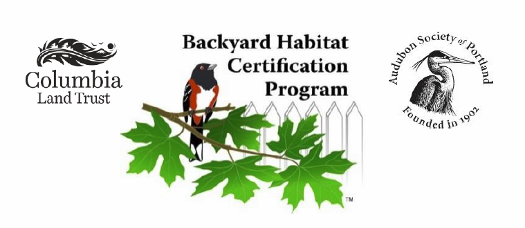 Backyard Habitat Certification Program, Quarter 3 Report (January 1 U2013 March  31)