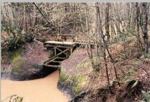 Tualatin-Oswego Canal