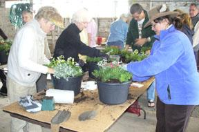 Flower Potting Class photo