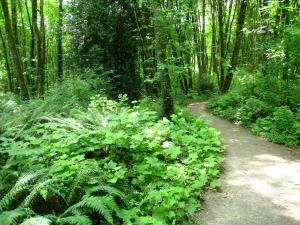 City of Lake Oswego Oregon Springbrook Park