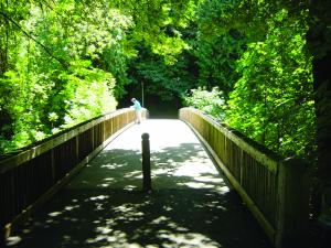 City of Lake Oswego George Rogers Park pedestrian bridge