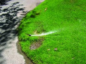Water Audits can show you where you could save