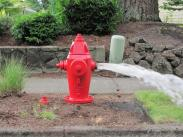 City of Lake Oswego Oregon fire hydrant flushing