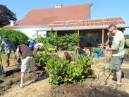 Volunteer Opportunites at Luscher Farm!