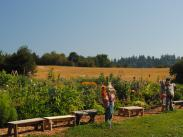 Luscher Farm Tours