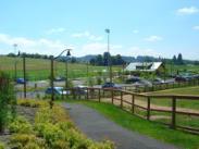 Hazelia Field photo