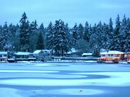 Category 1 – Life in Lake Oswego 1st Place – Christmas on the Lake by J'hon Will