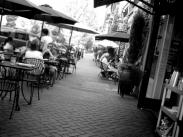 Category 1 – Life in Lake Oswego Runner Up – Street Eat by Kevin Brown