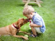Category 3 - 1st Place:  A Boy and His Dog by Annelie Adams