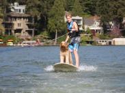 Category 1 - First Place: Dog Gone Surfing by Shelley Markstaller