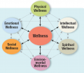 Six Dimensions of Wellness
