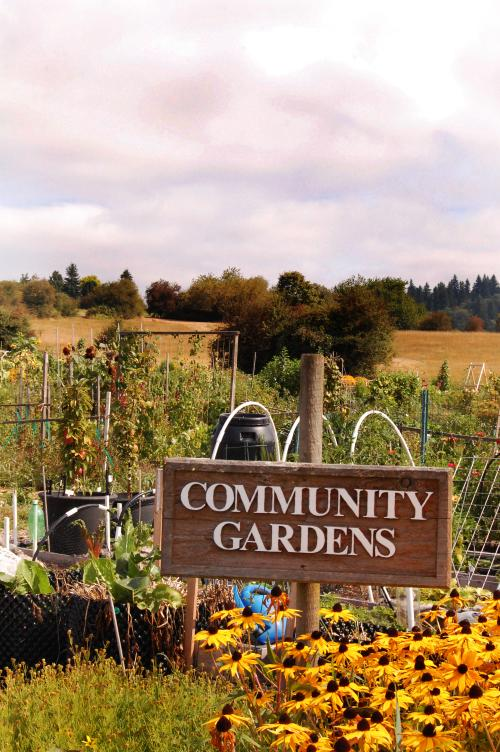 Community Gardens City Of Lake Oswego Oregon Official