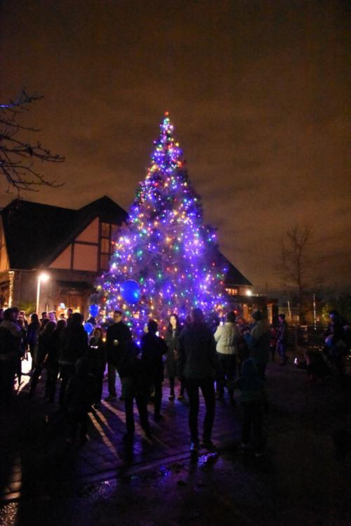 ... Christmas Tree Lighting A Festival of Twinkling Lights & Christmas Tree Lighting: A Festival of Twinkling Lights | City of ... azcodes.com