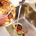 Kitchen sink and garbage disposal