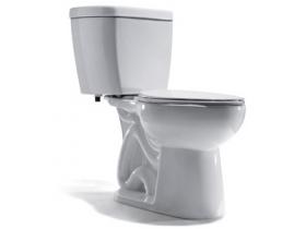 City of Lake Oswego low flow toilet