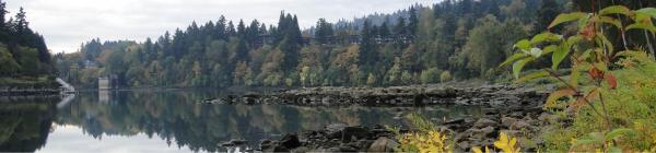 Willamette River rocky edge