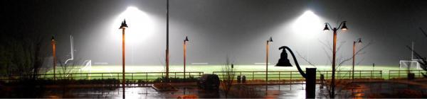 Hazelia Field fog