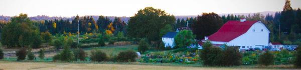 Luscher Farm Banner