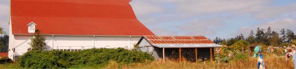 Luscher Farm barn side view