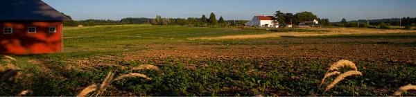 Luscher Farm