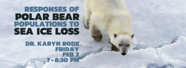 Polar Bears Feb 2, 7-8:30pm