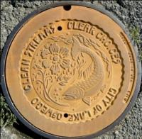 Lake Oswego Manhole Cover