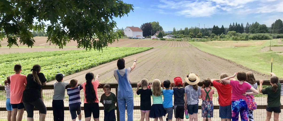 First Place:  Learning About Farming by Pam Helling
