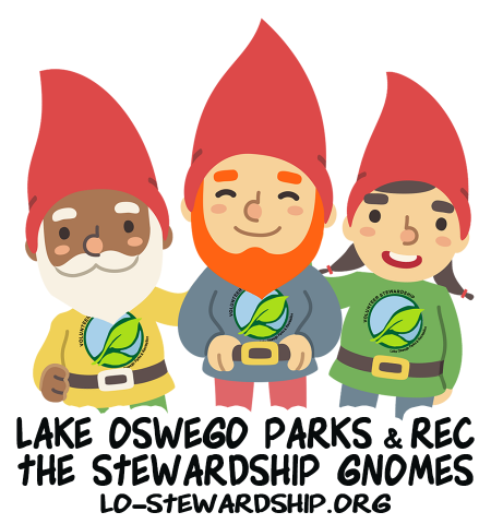 The Stewardship Gnomes!