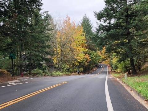 Fall colors on Jefferson Parkway