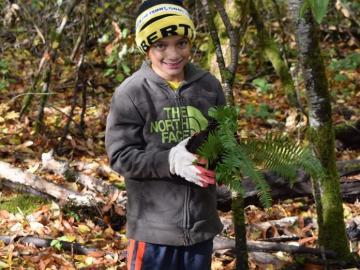 Boy Scout Planting Native Species