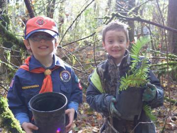 Cub Scouts Plant Native Species