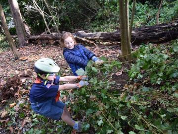 Stewardship volunteers pulling ivy