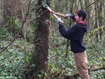 Youth doing Stewardship