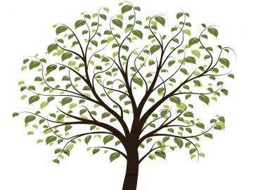 free family tree clip art images