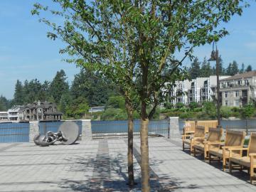 Photo of Sundeleaf Park